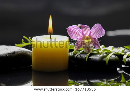 Still life with pink orchid with green leaf and candle on black stones