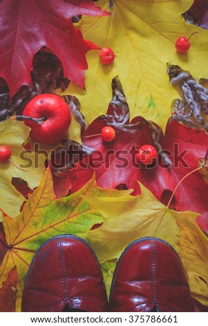 Still life with red shoes, colorful dry leaves and small red apples
