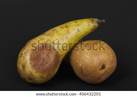 still life with rotten pears, black isolated - stock photo