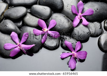 Still life with set of pink orchid on pebble - stock photo
