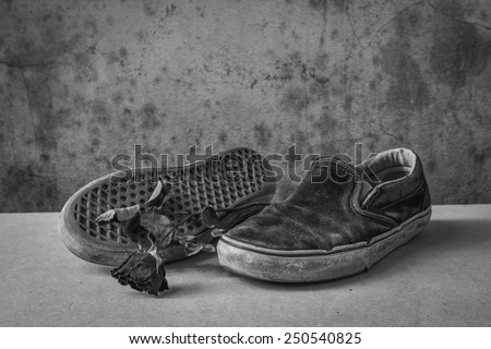 still life with shoe old and rose dry black and white - stock photo