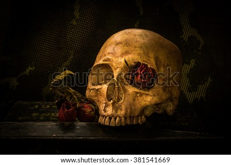 Still life with skull and dried roses on bullet box