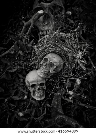 Still life with skull in abandoned bird nest, Concept save world