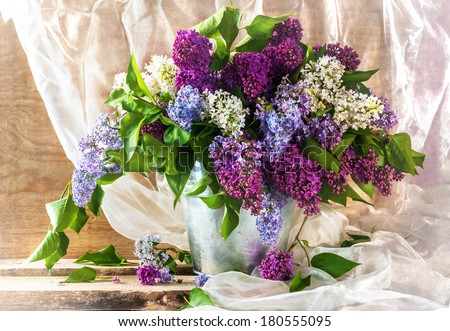 Still life with sprigs of lilac thriving - stock photo
