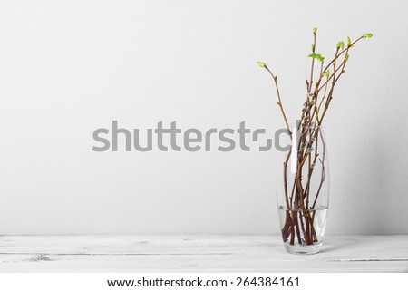 still life with spring branches - stock photo