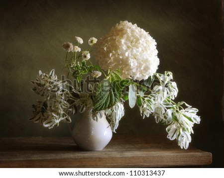 Still life with white hortensia