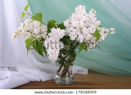 Still life with white lilac in vase  - stock photo