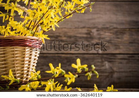 still life with yellow flowers - stock photo