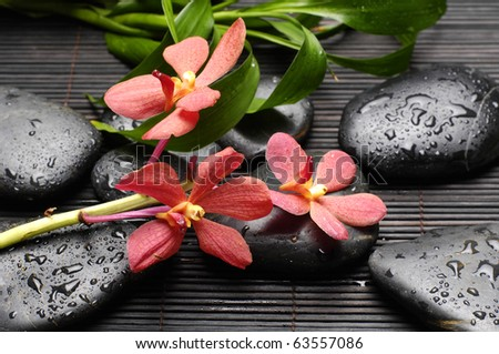still life with zen back stones and orchid with bamboo leaf on mat - stock photo