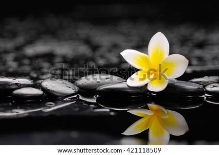 Still life with Zen stones and frangipani   - stock photo
