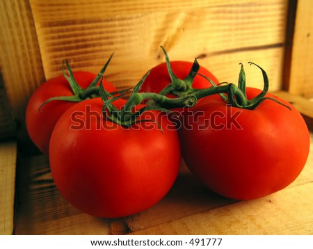 Still of tomatoes in rustical atmosphere - stock photo