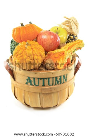 Still Picture of fresh collected from the farm field fruits and Gourds and pebbled squashes in wooden basket bushel over white background. - stock photo