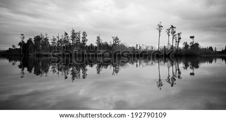 Still reflective waters with forest island - stock photo