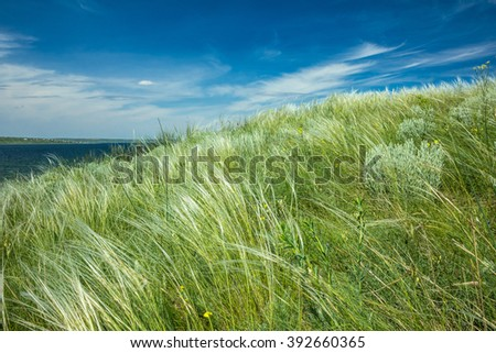 stipa meadow landscape on a sunny spring day; peaceful bright natural background - stock photo