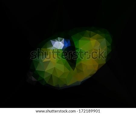 Stock cat eyes in dark night background - stock photo