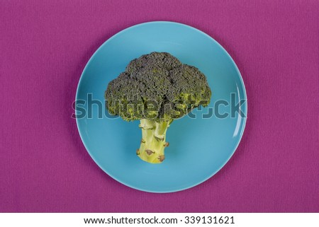 stock image of broccoli on blue plate. dieting concept - stock photo