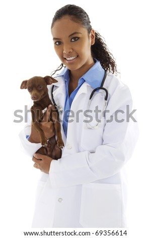 Stock image of female veterinarian with small dog over white background - stock photo