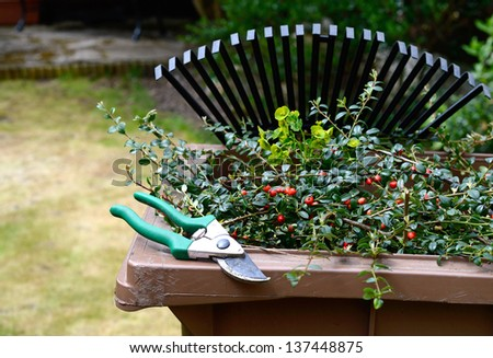 Stock image of garden clippings and secateurs with recycling container and lawn rake in the background. Copy space. - stock photo