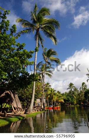 Stock image of polynesia culture, dance, festival and arts - stock photo