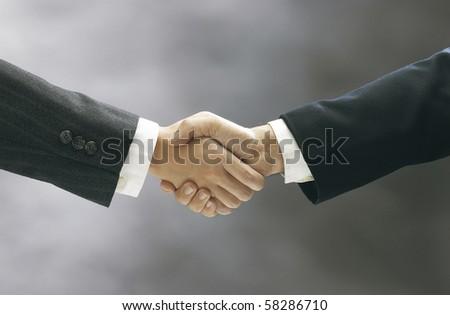 stock image of the hand shake - stock photo
