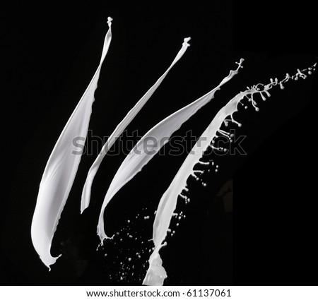 stock image of the milk splash - stock photo