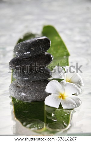 stock image of the spa concept