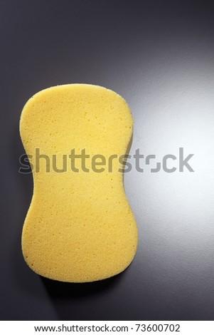 stock image of the sponge - stock photo