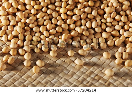 stock images of the  soya bean - stock photo