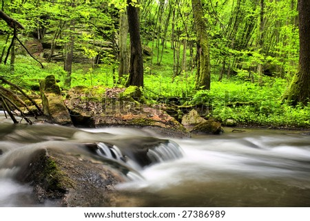Stock photo: an image of a stream in the green wood