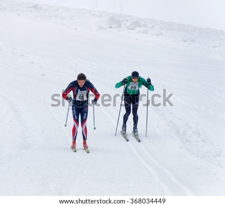 STOCKHOLM - JAN 24, 2016: Two cross country skiing men sprinting side by side at the Stockholm Ski Marathon event January 24, 2016 in Stockholm, Sweden