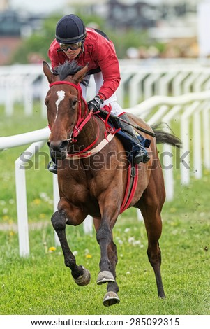 STOCKHOLM - JUNE 6: Jockey and horse in fast pace during race at the Nationaldags Galoppen at Gardet. June 6, 2015 in Stockholm, Sweden. - stock photo