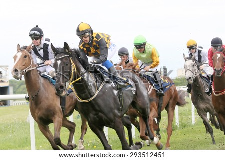 STOCKHOLM - JUNE 06: Tough race between the race horses and jockeys  at the Nationaldags Galoppen at Gardet. June 6, 2015 in Stockholm - stock photo