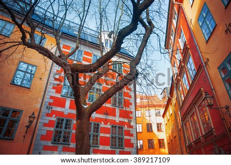 Stockholm. Old city. narrow streets and trees - stock photo
