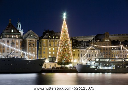 Stockholms old city with christmas tree