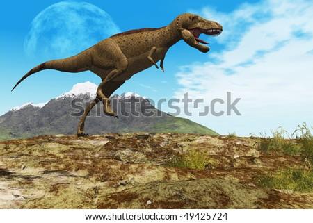 STOMPING GROUND - A Tyrannosaurus Rex dinosaur walks through his territory. - stock photo