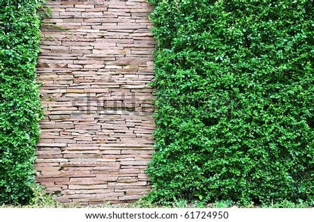 Stone and green grass - stock photo