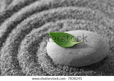 Stone and green leaf - stock photo