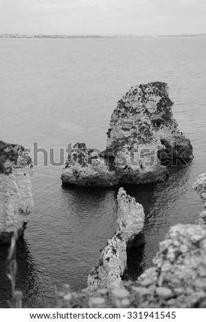 Stone arches, caves, rock formations at Dona Ana Beach (Lagos, Algarve coast, Portugal) in the evening light. Blurred flowers at foreground. Silhouettes of city buildings on horizon. Black and white. - stock photo