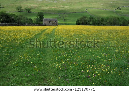 Stone barn with lead in tracks through hay meadows, Yorkshire dales. UK - stock photo