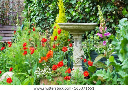 Stone Bird Bath In Summer Bedding Flowers