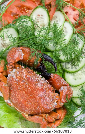 Stone crabs on a plate decorated with vegetable slicing - stock photo