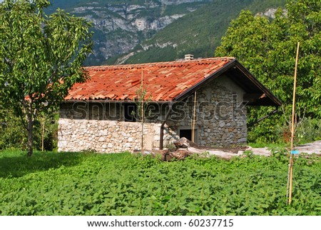 stone house set in the countryside surrounded by fruit trees and vineyards - stock photo
