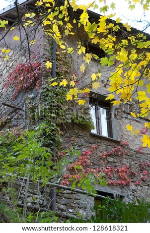 stone house with trees during autumn