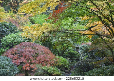 Stone Lantern Among Japanese Maple Trees in Fall Season at Portland Japanese Garden - stock photo