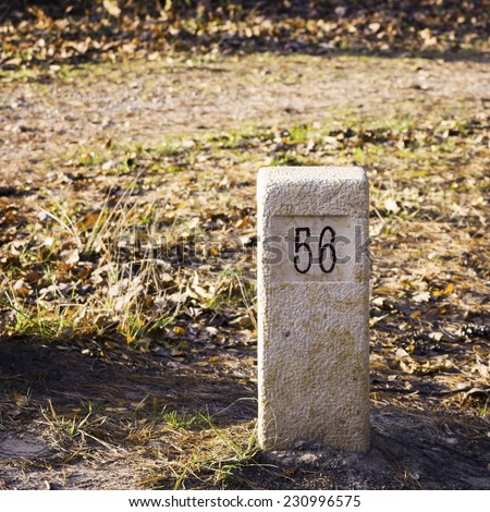 Stone milestone on a forest road - stock photo