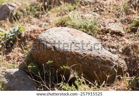 Stone Mountain - stock photo