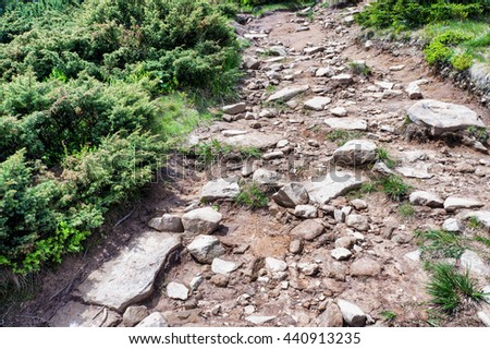 Stone Mountain road among the green bushes - stock photo