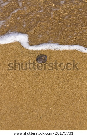 Stone on the sand of a beach in Menorca - stock photo