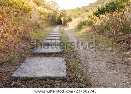 Stone path in park - stock photo
