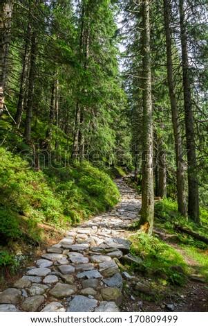 Stone path leading to the peak - stock photo